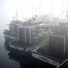 Langebaan fishing boats II by fourthangel