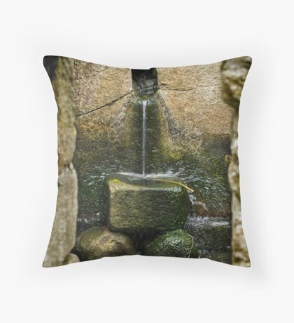 St Moling's Well, St Mullins, County Carlow, Ireland Throw Pillow