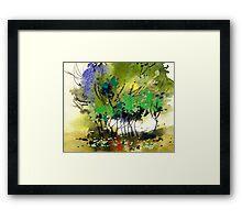 Light in trees Framed Print