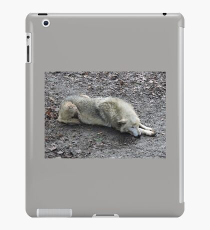 I Dreamt Of You iPad Case/Skin