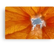 Grapefruit I Canvas Print
