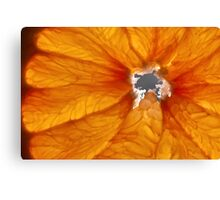 Grapefruit VI Canvas Print
