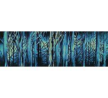 Woods-Gloom Photographic Print