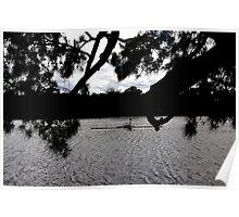 Kayaking On The Swan Poster