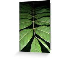 Fading Fronds Greeting Card