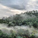 Tuscany. Foggy morning by andreisky