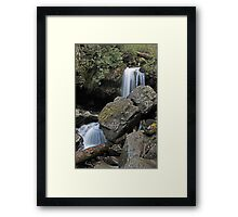 Grotto Falls, Great Smoky Mountains Framed Print