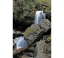 Grotto Falls, Great Smoky Mountains Photographic Print