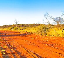 Northern Territory - Mount Connor - Cattle station drive 3 by Geoffrey Thomas