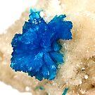 Cavansite Crystals by doorfrontphotos