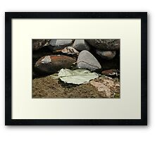 Leaf in the Water Framed Print