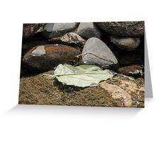 Leaf in the Water Greeting Card