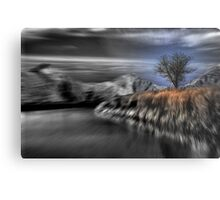 Black and White Blur with Color Metal Print