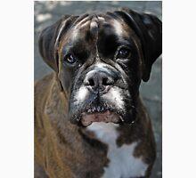 Portrait Of A Female Boxer -Boxer Dogs Series- Men's Baseball ¾ T-Shirt
