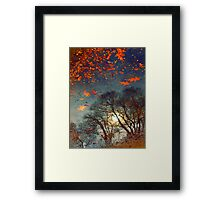 The Magic Puddle Framed Print