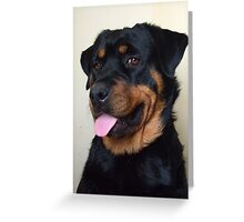 Portrait of a Rottweiler Greeting Card
