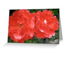 Les Demoiselles de Rochefort Roses Greeting Card