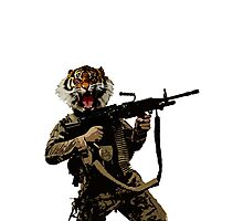 Tiger Soldier Photographic Print
