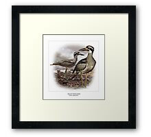 BEACH THICK-KNEE #1 Framed Print