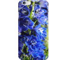 Blue Delphinium iPhone Case/Skin