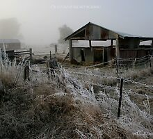 on a cold and frosty morning by dmaxwell