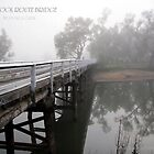 stock route bridge wodonga by dmaxwell