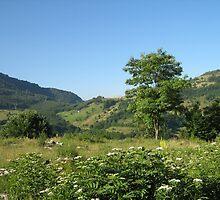 an awe-inspiring Bosnia and Herzegovina landscape by beautifulscenes