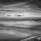 Driftwood in dramatic panoramic sunset scenery over lake Huron Black and white art photo print by ArtNudePhotos