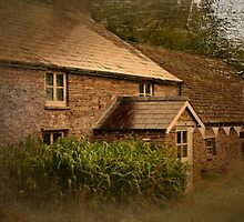 Craswell cottage by missmoneypenny