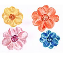 Bright coloured Flowers Photographic Print
