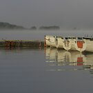 Misty morning at Llyn Trawsfynydd by Rory Trappe