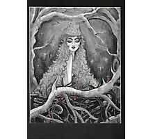 queen of the forest Photographic Print