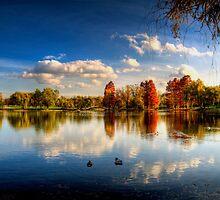 Afternoon in Tineretului by Bogdan Ciocsan