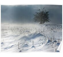 Tree in a Blizzard Poster