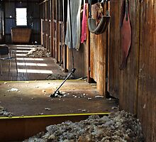 Shearing shed at Shear Outback by Darren Stones