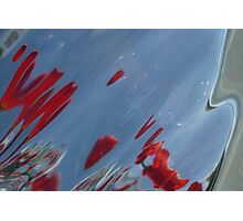 Tulips, Dorothy, Abstract Photography, Raw Image, Refraction through glass Photographic Print