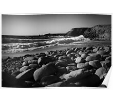 the wild coast Poster