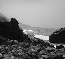Pismo Beach - California by Kent DuFault