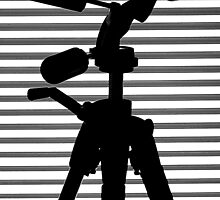 SILHOUETTE OF A SUPPORT BW by RakeshSyal