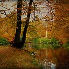 Autumn Arrangement by AnnieSnel