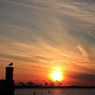 Sunset over shipping docks by Lauren Banks