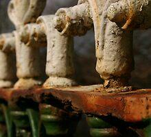 Rusty Railings by Martina Fagan