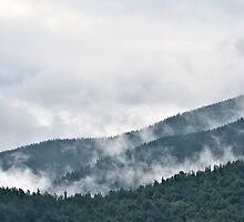 Mist in the Mountains by Oleksii Rybakov