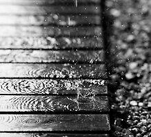 Deluge by Ann  Palframan