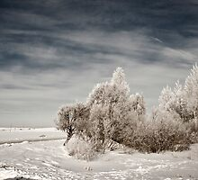 a sprawling Latvia