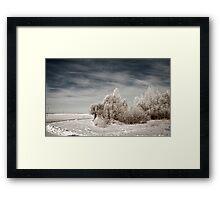 a sprawling Latvia landscape Framed Print