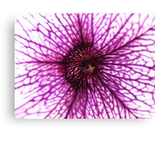 Abstract purple flower Canvas Print