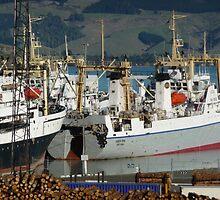 Russian boats at anchor by Steven Carpinter