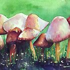 Mushrooms by ddhabicht