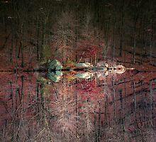 Fall Colors 4120 by Zohar Lindenbaum